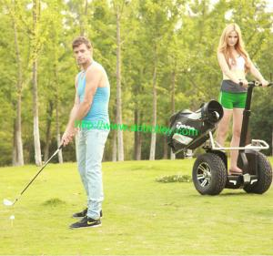 China 2014 hot Best golfer Electrical Golf cart electric cart auto balance scooter on sale
