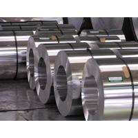 Hot Dipped Galvanised 304 Stainless Steel Coil Sheet Hot Rolled Professional