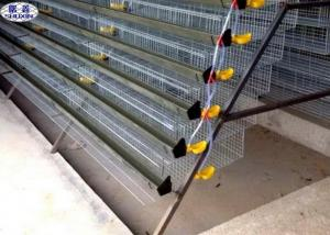 China Automatic Quail Egg Laying Cages Battery Operated Design Customized Size on sale