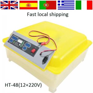 China 2016 newest Full Automatic transparent  12 V 48 eggs DC Power mini 48  egg Incubator for sale with CE certificate HT-48 on sale