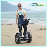 China Brush Or Brushless Motor Electric Chariot Scooter Black Two Wheel Segway wholesale