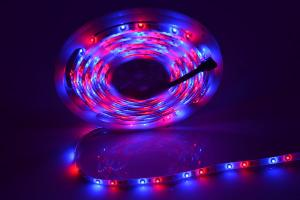 China 5050 12 W waterproof DC5V RGB LED Strip light Epistar with Magic IC controll on sale