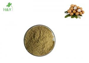 China Brown Yellow Powder Herbal Extract Powder Longan Fruit Extract 2 Years Shelf Life on sale