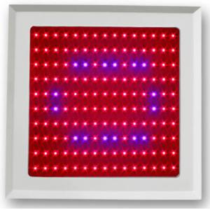China 150w LED Plant Grow Light Red Blue spectrum for Vegetable Shed and botanic garde on sale