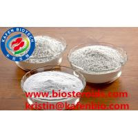 Hydroxyethyl Starch Powder Pharmaceutical Raw Materials CAS 9005-27-0 Highly Pure