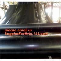 2.0mm geomembrane for landfill Hdpe geomembrane landfill geomembrane,hdpe geomembrane price/gse hdpe geomembrane BAGEASE