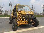 China 4 Stroke CDI CTV Water Cooled 250CC Go Kart Buggy With Electric Start wholesale