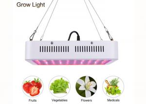 China Marijuana 300W Diy Led Grow Lights For Indoor Greenhouse Garden Horticultural Agricultural on sale