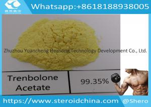 China Trenbolone Acetate Injection Trenbolone Powder For Lean Muscle , CAS 10161-34-9 on sale