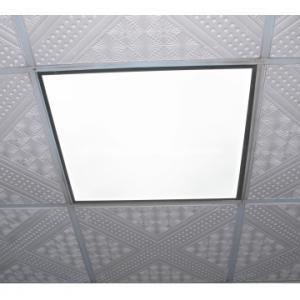 China designed LED Panel light 600*600mm on sale