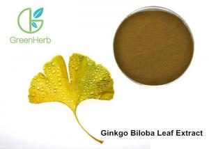 China Factory Supply Ginkgo Flavonoids , Terpene Lactones , Ginkgo Biloba Extract Powder on sale