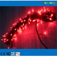 China garden decorate 100leds AC christmas led string light on sale
