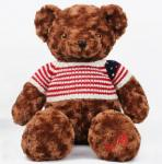 Dark Brown Teddy Bear Personalized Plush Toys Customers Option Function