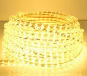 China AC220V AC110V LED Rope Light SMD5050 IP65 High Voltage Flexible LED Strip on sale