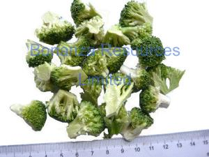 China 2016 New Natural Vegetable Food Freeze Dried Broccoli on sale