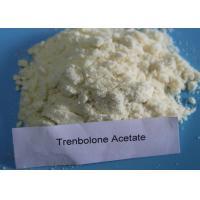 Safe Trenbolone Series Powder CAS 10161-34-9 Muscle Gain Steroids