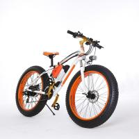 High Speed 26 Inch Tires 2 Wheel Electric Bike Outdoor Off Road Dirt Electric Snowmobile Bikes