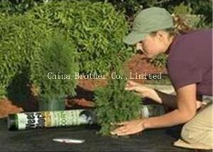 China Customized 80gsm Black Weed Control Membrane PP Woven For Agriculture on sale