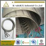 Maille tissée sur métiers à main de câble métallique de l'acier inoxydable 304 des cadres d'escalier