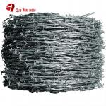 Hot Dip Galvanized Barbed Wire , PVC Coated Barded Wire For Protection