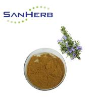 China Natural High Purity Rosemary Extract Powder By Supercritical CO2 Extraction on sale