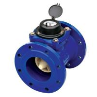HDI Bulk Woltman Water Meter (Removable Element)