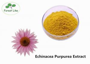 China Medicinal Herb P.E. Echinacea Purpurea Extract 4% Polyphenols Anti-infection on sale
