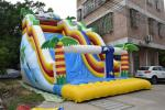 Inflatable wide wave slide inflatable dolphin slide inflatable arch dry slide bright colour cheap price inflatable slide
