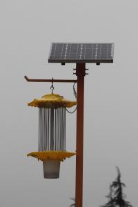 China High Quality Outdoor Solar garden light solar insect trap on sale