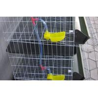 Metal Wire Layer Quail Cages for Sale
