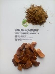 China Sky fruit Extract, Fructus Swietenia Macrophylla Extract, reduce blood fat, reduce blood sugar, Chinese manufacturer on sale