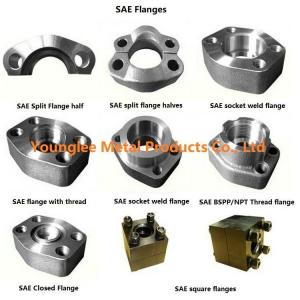 China SAE flanges to standard ISO 6162-1/2, SAE J518C, for hydraulic pipe connection on sale