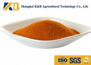 China Easy Absorb Concern Corn Gluten Meal Promoting Growth For Egg Chicken on sale