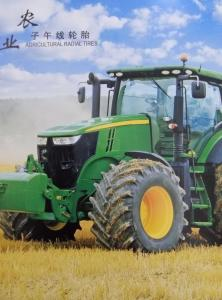 China GREENWAY brand china factory Farm Agricultural tractor tire of with competitive price 10.0/80-12 31*15 with top quality on sale