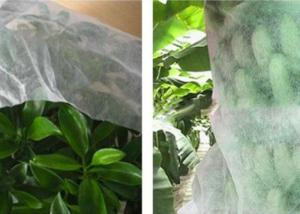 China Good Transparency Agriculture Non Woven Fabric Non - Poisonous Frostproof Fabric on sale