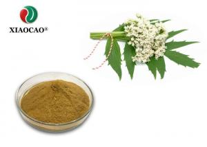China Root Valerian Extract / Valeriana Officinalis Extract Valeric Acid Powder on sale