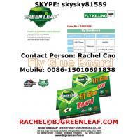 Fly and Flies Tray  SKYPE ID: skysky81589