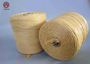China Guita ignífuga tratada ULTRAVIOLETA de los PP para las esteras que tejen o la prensa del paquete on sale