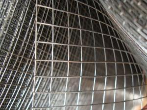 China 1/4 1/2 PVC Coated / Galvanised Welded Wire Mesh Panels For Constructing Fence on sale