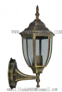 China Popular Induction Light Outdoor Wall Lighting Ce Approval In Different Colors on sale