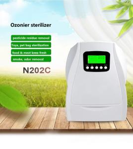 China 110v/60hz  small 500mg home use air purifier ozonator generator on sale
