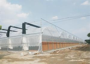 China Film / NFT Cover Material Plastic Film Greenhouse Good Insulation Performance on sale