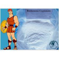 China 99% Body-building Muscle Growth Boldenone Cypionate CAS:106505-90-2 White Powder on sale