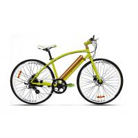 36V250W Cool Sport Fastest Electric Mountain Bike With Pedal Assistant