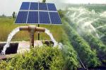 Off Grid 1kw Solar Powered Generator / Residential Solar Panels For Water Pump