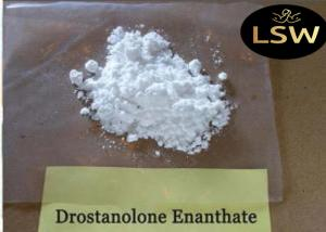 China 99% Purity Masteron Steroid Drostanolone Enanthate White Powder Bodybuilding Supplements on sale