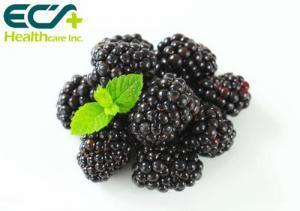 China Normal Blood Clotting Organic Blackberry Powder , Health Vitamin K Powder on sale