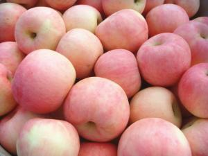 China Grade A Sweet Red Fuji Apple Contains Niacin For Apple Juice on sale