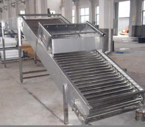 China Convoyeur de rouleau d'installation de fabrication de fruits et légumes pour des machines de boisson on sale