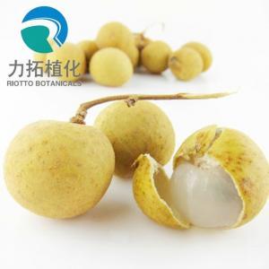 China Brown Yellow Powder 24 Months Freeze-dried Organic Longan Extract Powder on sale